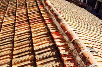Tipos de tejados y cubiertas best colocacin de cubiertas - Cubiertas vegetales para tejados ...
